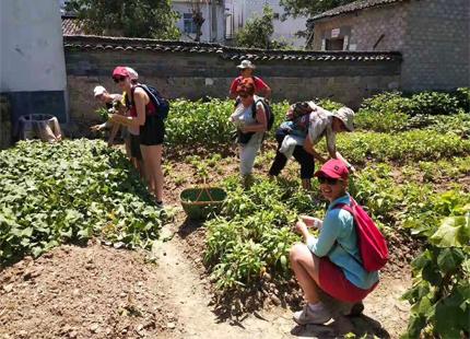 voyageurs au village Nanping