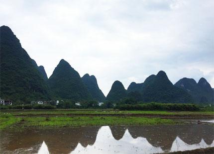 Campagne de Yangshuo