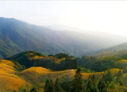 terrazas de arrozales en Longji