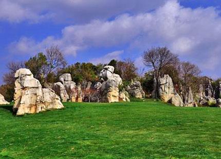 forêt de pierres