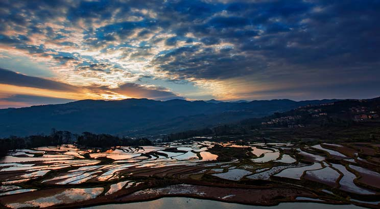 rizière en terrasse de Yuanyang