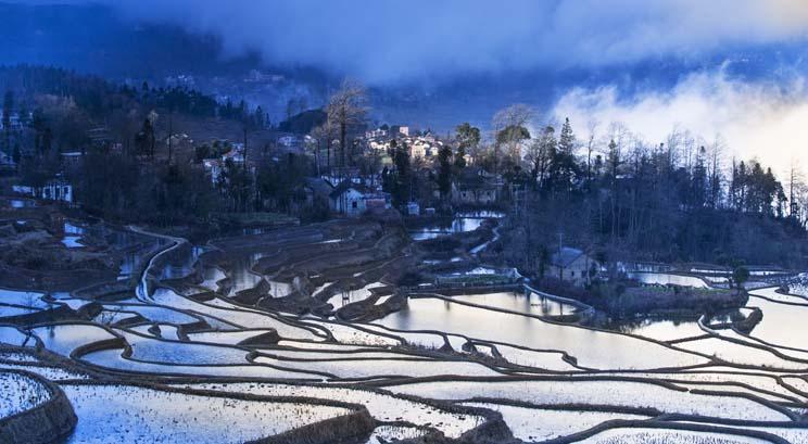 rizière de Yuanyang