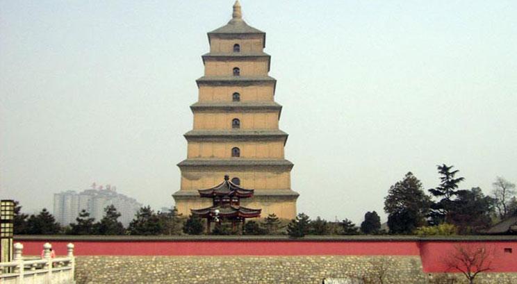 Gran pagoda de oca salvaje