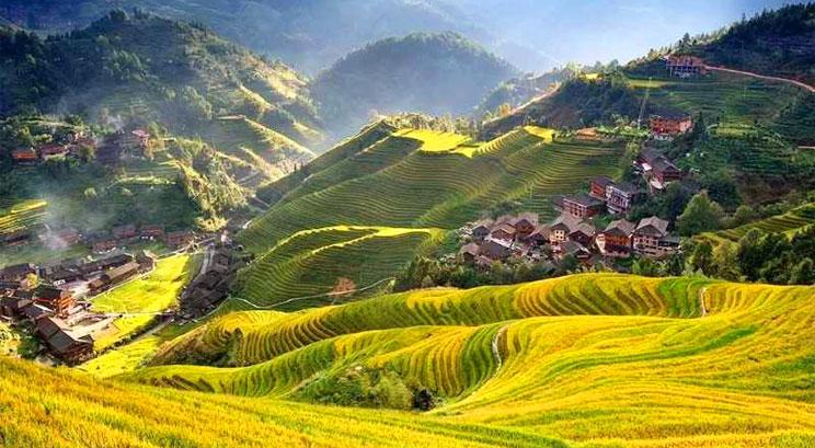 rizière en terrasse de Dazhai