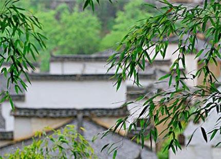 Village de Mukeng et la Forêt de bambou