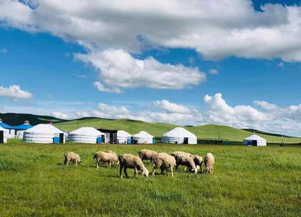 des steppes en Mongolie intérieure